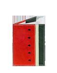 Кожаная обложка  на паспорт №1, Арбуз
