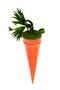 Косметичка Морковь